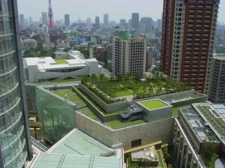 Tokyo-Roof-Park-000000132606_Medium